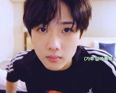 The 7th Sense, Park Jisung Nct, Park Ji Sung, Baby Chicks, Wall Quotes, Kpop Groups, Nct Dream, Nct 127, Baby Names