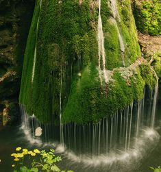 Bigar Waterfall, Caras Severin, Romania / Fancy Crave (bigar waterfall,carass severin,romania,reddit,moss,falls,forest,photo paper,photographic inks,high quality)