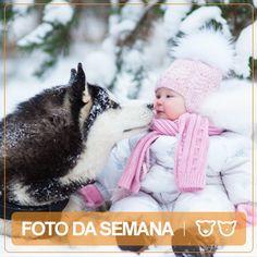 Foto da Semana www.veterinario24horas.pt