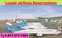 Check on Luxair flight status and make your reservations. Search & Compare all available Airline Tickets, find the cheapest deal and Save Money! Contact us +1-877-311-7484 Airline Booking, Airline Tickets, Hand Baggage, Flight Reservation, Flight Schedule, Flight Status, Airline Reservations, Airline Flights, Business Class