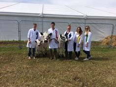 The Abbotsholme Team at the Cheshire Show!