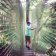Liam's not so interested in the birds but loved the canopy walkway. Lots of other things to do for him so he gave it 5 stars #rspb #sundaywalk #staffordshire