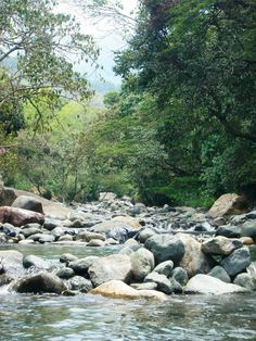 Pance River Cali/Colombia I played here with my family! It is close to my grandfather's home.