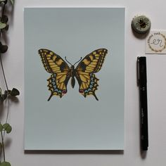 This print is perfect for adding a splash of colour to your room. You can also enjoy the delicate details on the butterfly wings - what a beautiful little creature! #print #design #drawing Butterfly Print, Butterfly Wings, Color Splash, Print Design, Delicate, Creatures, Colour, Drawings, Room