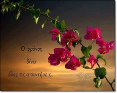 Greek Music, Greek Words, Greek Quotes, Old And New, Picture Video, Inspirational Quotes, Angel, Sayings, Videos