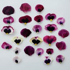 Pansy Petals (by Cornflake Couture)