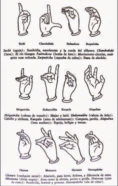 Los Once Mudras son ejercicios básicos muy sencillos de realizar y sirven para ayudar a curar uno mismo. Cada postura se tiene que practicar...