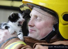 Photos of Hunky Firefighters with Adorable Cats Will Melt Your Heart | First to Know