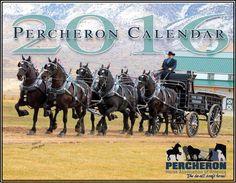 2016 Percheron Calendar