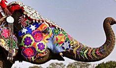 Festival dos Elefantes, Jaipur, Índia.