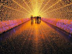 incrível festival de luzes do parque botânico Nabana no...Japão