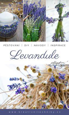 Lavender, Herbs, Table Decorations, Garden, Diy, Crafts, Garten, Manualidades, Bricolage
