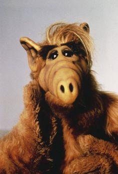 fondos Schauspieler Michu Meszaros: Alf i - Don Knotts, Alf Tv Series, Mejores Series Tv, Alien Life Forms, 80 Tv Shows, Favorite Tv Shows, My Favorite Things, Spiegel Online, Cartoon Tv