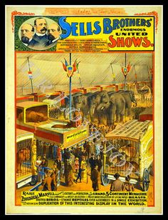 SELLS BROTHERS Enormous United Shows Circus Poster