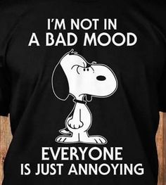 Peanut Snoopy T shirt – I wish I could do it sometimes. Peanuts Quotes, Snoopy Quotes, Me Quotes, Funny Quotes, Funny Memes, Hilarious, Jokes, Snoopy Love, Charlie Brown And Snoopy