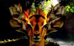 Os jesuítas propagaram a imagem errônea de que Anhangá seria o equivalente ao Diabo da religião Cristã, porém, Anhangá (que significa espírito) seriam almas que vagam pela Terra, que podia assumir qualquer forma, mas que seria mais visto como um veado com olhos de fogo. Além disso, Anhangá seria o protetor dos animais, protegendo-os contra caçadores. Quando um animal consegue escapar miraculosamente durante uma caça, os índios atribuem tal façanha a Anhangá.