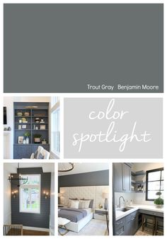 Benjamin Moore Trout Gray is quickly become a popular dark rich accent color for walls, cabinetry and interior doors. Check out the versatility of this color on our Color Spotlight. House, Home, Paint Colors For Home, Interior Paint Colors Schemes, French Country Bathroom, Room Colors, Dutch Boy Paint, House Colors, Grey Paint