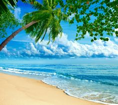 342ae52703 Download Beautiful Beach Wallpaper by Fuxya - 4a - Free on ZEDGE™ now.  Browse