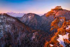 """""""Sokolica - Pieniny Mountains""""  Sokolica, NP Pieniny Mountains, Poland"""