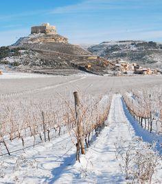 Paisajes de invierno en la Ribera del Duero. Bodegas Comenge y campos de vides sin vino