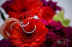 Los Cabos Wedding – Private Villa Wedding – Alec and T Photography