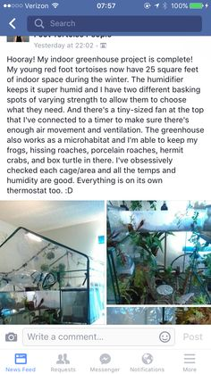 Potential Aubrey home Red Footed Tortoise, Indoor Greenhouse, Tortoises, Square Feet, Turtles, Tortoise, Winter Garden
