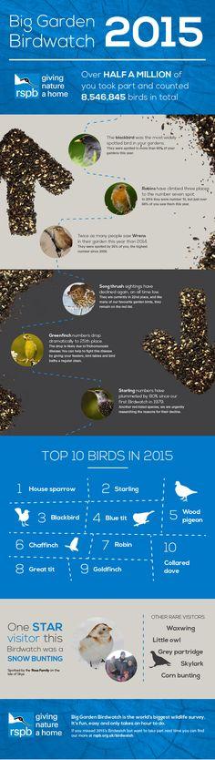 Big Garden Birdwatch 2015 Results