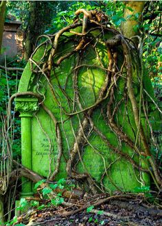 Overgrown headstone in Highgate Cemetery , London .
