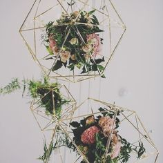 Loving these geometric floral shapes!  #Sunday #inspiration #inspo #floral #geometric #lovely #beautiful #pretty #wedding #decor #decoration #pinterest #design #concept #colours #succulent #pink