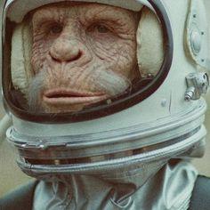 Ben Lee Music Video – WWF Space Monkey