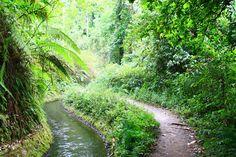 Way to go to the Senaru Waterfall