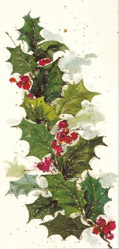 1000 images about painting holly for christmas on for Painted christmas cards