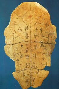 'Oracle bone' tortoise shell with inscriptions. Yin ruins, China    The breastbone of a tortoise with incised inscriptions.