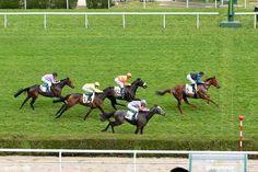résultat de dimanche saint cloud 5 8 12 13 6  -lundi chantilly plat 17 chevaux Saint Cloud, Ocean, Sunday, The Ocean, Sea