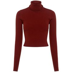 A.l.c. - Elisa Turtleneck Cropped Sweater (7.090 CZK) ❤ liked on Polyvore featuring tops, sweaters, shirts, turtle neck crop top, turtleneck sweater, ribbed sweater, cropped turtleneck sweater and red turtleneck