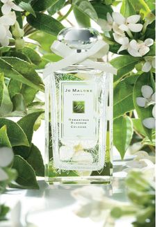 The new Limited Edition : The Osmanthus Blossom Collection by Jo Malone London
