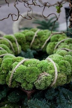 LOVE the moss wreath! make in summer with moss by deck. Noel Christmas, Green Christmas, Winter Christmas, Christmas Wreaths, Christmas Decorations, Xmas, Moss Wreath, Twine Wreath, Moss Garden