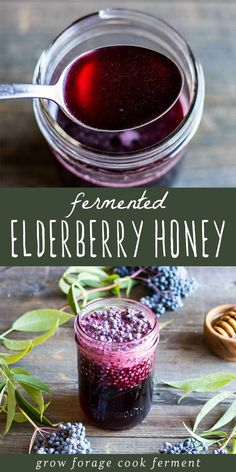 Make this fermented elderberry honey this season to help with cold and flu season. Use foraged elderberries to make this great tasting herbal remedy! #elderberry #honey #fermented #ferment #forage #elderberries #herbalism #herbalmedicine #naturalremedy