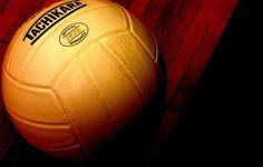 ball voleyball