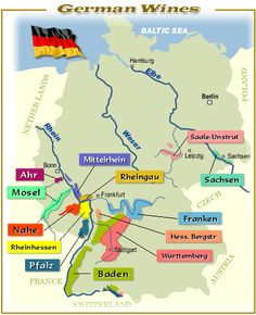 Wine Regions In Germany, similar to the map I use in our German wine class. Try these incredible wines if you haven't experienced them yet. Wine And Liquor, Wine And Beer, Wine Drinks, Wine Infographic, Chateauneuf Du Pape, Wine Searcher, Wine Education, Wine Guide, Wine Wednesday
