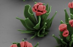 Este jardín de lilas y delicados tulipanes solo puede observarse con el microscopio electrónico.  Los resultados muestran que es posible diseñar y construir todo tipo de estructuras extremadamente complejas con patrones intricados controladas hasta el nivel molecular, lo que podría tener interesantes aplicaciones industriales y tecnológicas.