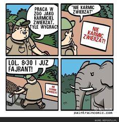 praca w zoo