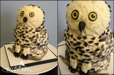 Owl cake for 5 people | Blue Note Bakery - Austin, Texas