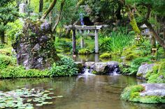 京都南禅寺大寧軒の珍しい三柱鳥居