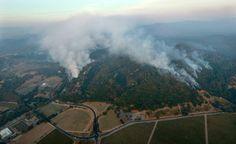 126 Best Santa Rosa Fire images