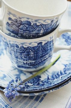 bluecottage.quenalbertini2: Blue transferware | all the beauty things...