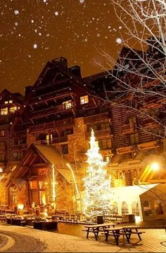 As the Beaver Creek landscape changes from yellow aspens to sheets of white snow, The Ritz-Carlton, Bachelor Gulch begins its holiday season with a tree lighting ceremony for hotel guests and locals in the area. Hotel Guest, Hotel Spa, Beaver Creek Mountain, Mountain High, Snow Photography, Travel Photography, Aspen Trees, Tree Lighting, Christmas Aesthetic