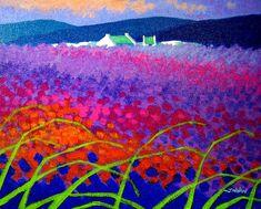 Rainbow Meadow - John Nolan