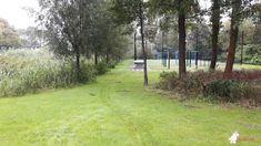 Pingpongtafel Groen bij Speelplek in Zaanstad
