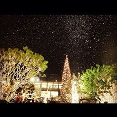 Snowing @AmericanaBrand! Thanks for the amazing pic @liz_kujula.
